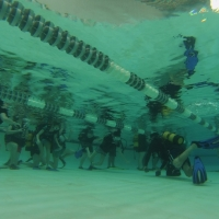 Student's descend underwater to face their experienced dive instructor