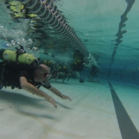 Students in the 15-18 age Space Center U program dive to experience weightlessness