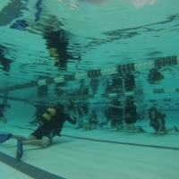Students first learn how to Scuba from certified dive instructors