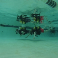 Students swim around the pool in their Scuba gear
