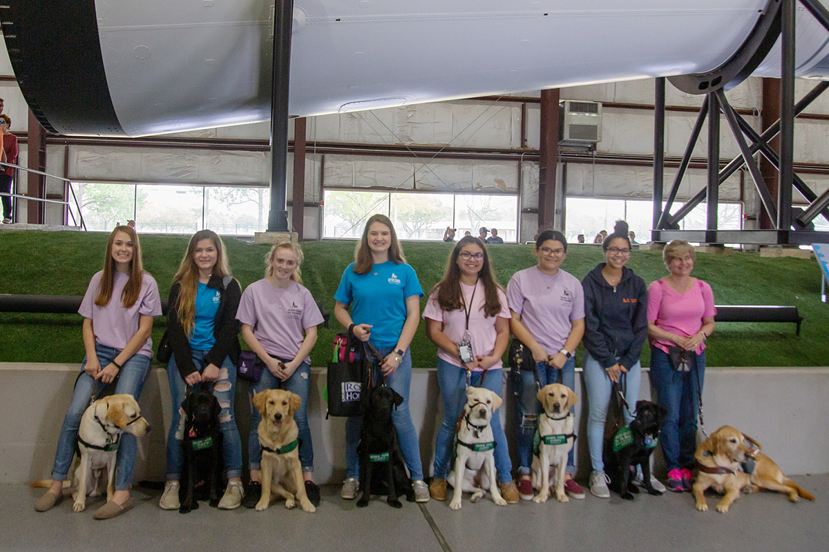 Guide dogs with trainers in Rocket Park