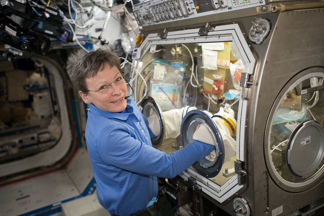 Peggy Whitson carries out an experiment onboard the ISS