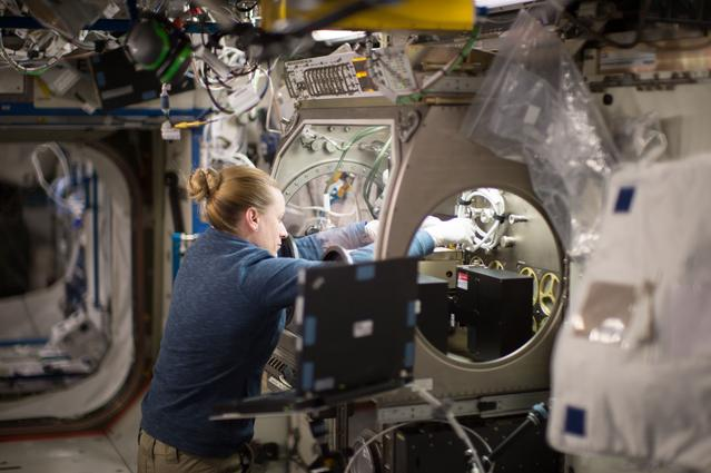 Kate Rubins at the Microgravity Science Glovebox