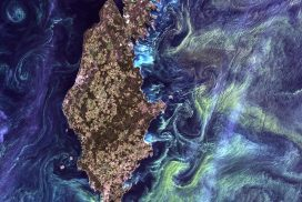 """Solving Space: Earth from Space - Gotland Island """"Van Gogh"""""""
